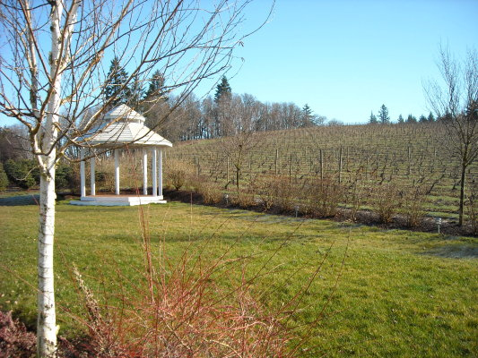 silver-falls-winery