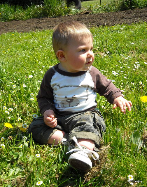 Young Wesley